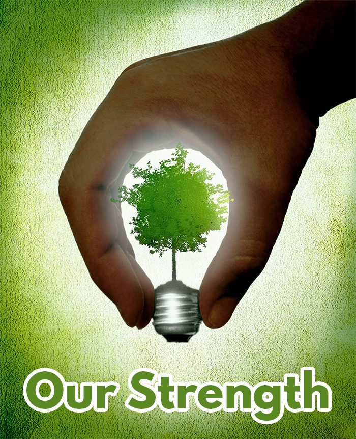 https://enersolbiopower.com/wp-content/uploads/2019/10/strength-700x862.jpg